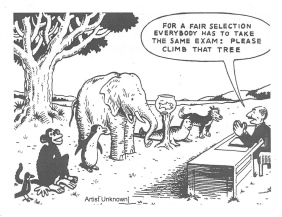 Differentiated Instruction